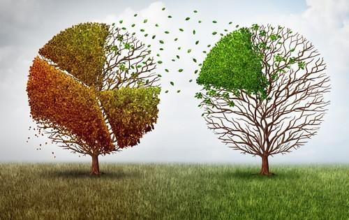 money-funding-2-trees