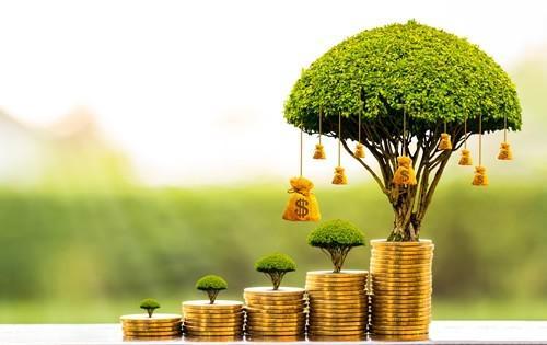 investment-basics