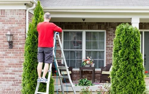 man-trimming-shrubs-ladder-house