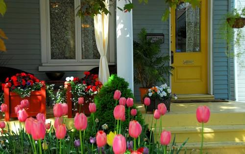Reasons to Plan Your Spring Home Renovation Projects Today